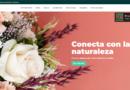 Colvin, código descuento del 10% en floristería online para regalar flores y plantas